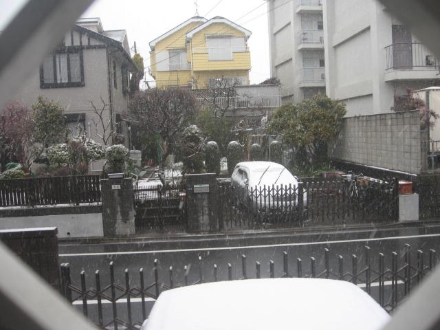 20110211-yuki 002.jpg